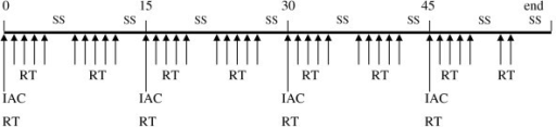 Timing of the treatment protocol. SS = Saturday, Sunday; RT = radiotherapy; IAC = intra-arterial chemotherapy.