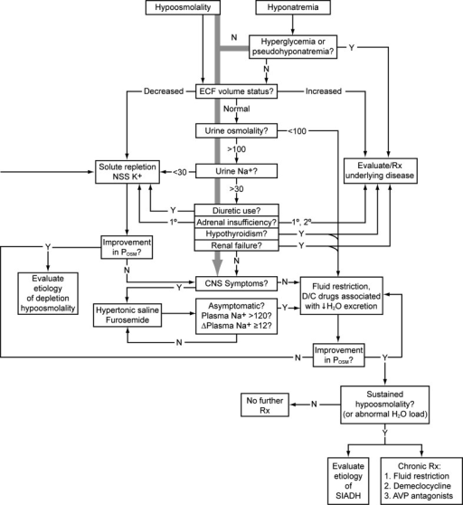 Algorithm for evaluation and treatment of hypo-osmolar patients. The grey arrow running down the center emphasizes that the presence of central nervous system dysfunction due to hyponatremia should always be assessed immediately, so that appropriate therapy can be started as soon as possible in symptomatic patients, even while the outlined diagnostic evaluation is proceeding. Values for osmolality are in mOsm/kg H2O, and those referring to serum sodium concentration are in mEq/L. Δ change (in concentration), 1° primary, 2° secondary, AVP arginine vasopressin, CNS central nervous system, D/C discontinue, ECF extracellular fluid, N no, NNS normal (isotonic) saline solution, Posm plasma osmolality, Rx treat/treatment, SIADH syndrome of inappropriate antidiuretic hormone secretion, Y yes; (modified from Verbalis (2009) Hyponatremia and hypo-osmolar disorders. This chapter was published in: Greenberg A, Cheung AK, Coffman T, et al., eds. Primer on Kidney Diseases, 5th ed. Philadelphia: Saunders; 52–59)