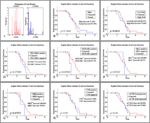 Kaplan-Meier survival analysis. A: Overall survival curves of patients according to APOA1, CERU, FIBB, FIBG, IGHG1, IGHG2, S10A9, SAA, TTHY, A2MG, APOA1, ACTB, CATA, CERU, FIBB, FIBG, HPT, HEMO, IGHG1, S10A9 (p<0.01); Survival rates between: B: males and females; C: low- and high-risk cases; D:TEL/AML1 positive and negative patients; E:BCR/ABL positive and negative patients; F:MLL positive and negative patients; G: MRD positive and negative patients; H: CNS positive and negative patients; I: Indicatevely, a survival curve for the ACTB protein, which did not manifest significant differences in survival rates. The same was true for all proteins under study.