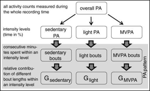 Structure of physical activity variables. PA = physical activity; G = GINI-Index; high G = mainly few long bouts are responsible for the activity pattern; low G = mainly short bouts of similar length contribute to the activity pattern.