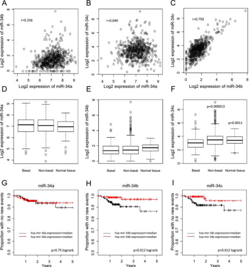 Analysis of miR-34 family members using breast cancer TCGA data. Pair-wise scatter-plots of the expression of miR-34a, −34b and -34c in 658 miRNA HiSeq breast tumor samples from TCGA (A-C). Box plots demonstrate log2 expression levels of miR-34a (D), miR-34b (E) and miR-34c (F) in basal-like tumors, non-basal-like tumors and non-malignant breast tissue. Indicated p-values were calculated with a t-test comparing the group with the basal-like tumor samples. Kaplan-Meier analysis curves were constructed using the 310 TCGA tumors that had miRNA HiSeq data and follow-up data (G-I). The expression data were divided based on median expression and new tumor event was used as end point.