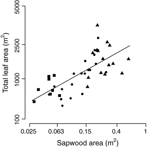 The relation of sapwood area (SA) with total leaf area (TLA), based on a regression analysis. Symbols represent four species: Sweetia (squares), Hura (triangles), Schizolobium (circles), and Cariniana (diamonds). Note that the axis for SA has a log scale and the axis for TLA a square root scale