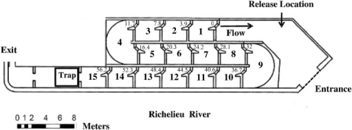 Schematic of the Vianney-Legendre vertical slot fishway on the Richelieu River in Quebec, Canada.Distance metrics, corresponding to locations of PIT antennas, indicate the cumulative minimum transit distance between successive fishway basins (beginning at 0 m). The order of the basin starts from downstream (basin 1) to upstream (basin 15) in accordance with the direction of fish movement.