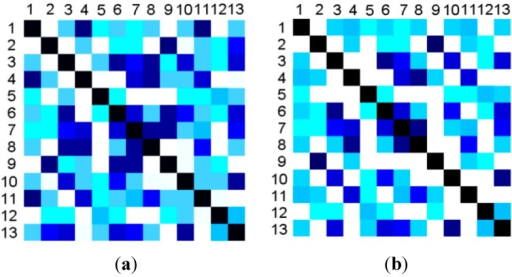 The comparison of similarity matrixes for 13 primitive actions between original features and selected features. The hue demonstrates the similarity between any two actions. (a) The similarity matrix for the original features; (b) The similarity matrix for the selected features.