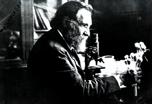 <p>Seated at microscope, right profile.</p>