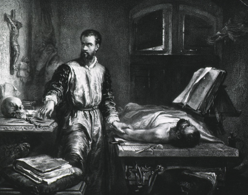 <p>Standing, three quarter length; right face; before dissecting table with cadaver.  Skull and instruments on another table; crucifix upon wall.</p>