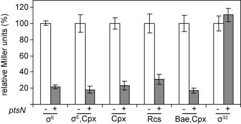 Overexpression of ptsN reduces cell envelope stress.β-galactosidase activity from the rpoHP3-lacZ (σE, SEA4254), degP-lacZ (σE and Cpx, SEA4181), cpxP-lacZ (Cpx, SEA4179), rprA-lacZ (Rcs, SEA4199), spy-lacZ (Cpx and Bae, SEA4189), and htpG-lacZ (σ32, SEA4185) fusions was measured in overnight cultures, with and without overexpression of ptsN. Activity of each lacZ fusion was normalized to that of cultures with no ptsN overexpression and set to 100%. Average values and standard deviations from a minimum of 3 experiments are shown.