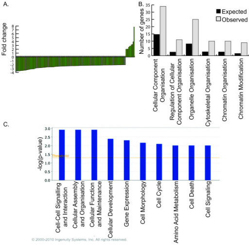Effect of electric current + GFP expression on endogenous gene expression of the VLM. (A) Genes showing differential expression when exposed to current + GFP and their fold changes. For gene names refer to Table 3. (B) GOTM analysis showing biological function and expected and observed number of genes in each category compared to the number expected from a random set of 111 genes. (C) IPA functional analysis showing the top ten biological functions enriched in the VLMg compared to VLM samples.