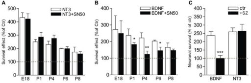 NFκB is necessary for BDNF but not NT3-induced survival of postnatal SGNs.(A–C) SGNs were cultured for 24 h with BDNF or NT3 (each at 20 ng/ml) and in the presence of specific inhibitors of the NFκB signaling, SN50 (5 μM) (A,B) or sulfasalazine (1 mM, sz; P4, C). Note the absence of effect of the inhibitors on survival function of NT3 while they dramatically decrease the survival promoting action of BDNF (n = 3–8; *P < 0.05, **P < 0.01, ***P < 0.001; compared to neurotrophin alone).