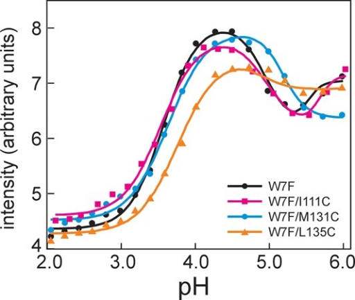 pH dependence of the quenching of thefluorescence of W14 inducedby the presence of cysteine at positions 111, 131, and 135. All proteinscontained the W7F mutation: W7F (filled black circles, black line),W7F/M131C (filled blue circles, blue line), W7F/L135C (filled orangetriangles, orange line), and W7F/I111C (filled magenta squares, magentaline). The maximal intensity of the fluorescence emission was recordedwith an excitation wavelength of 288 nm.