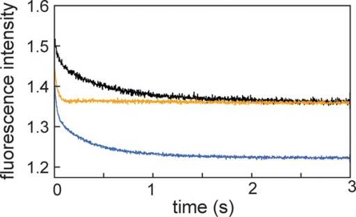 Fluorescence decay after a pH jump frompH 2.2 to 6.0 for W7F (black),W7F/M131C (blue), and W7F/L135C (orange). The stopped-flow tracesshow total fluorescence with a 320 nm cutoff filter. The excitationwavelength was 288 nm.