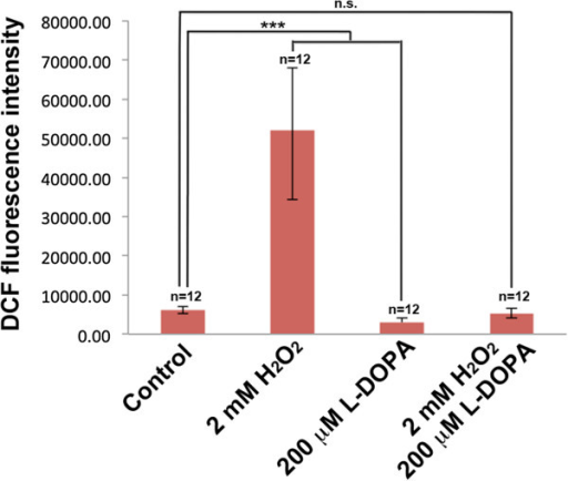 Quantitative ROS measurements in response to H2O2, L-DOPA and H2O2/L-DOPA treatments. Quantification of ROS production in SH-SY5Y cells in response to eight hours of 2 mM H2O2, 200 μM L-DOPA and 2 mM H2O2/200 μM L-DOPA treatments as determined by DCF fluorescence intensity. Each data point is the average of 12 replicate samples and presented as means ± SD. Standard deviations are indicated by error bars. ***p < 0.001.