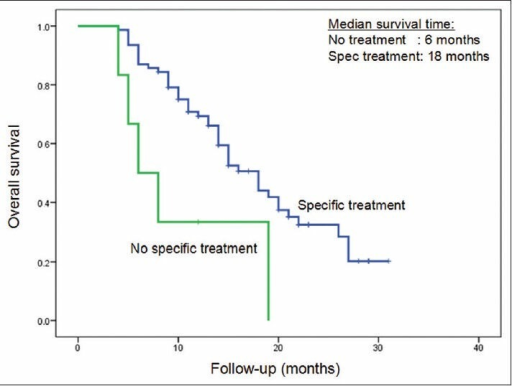 Overall survival curves based on treatment