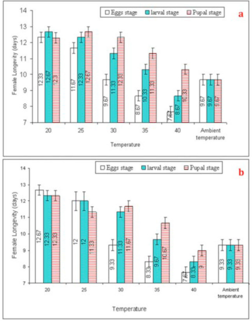 Mean (±SEM) longevity (days) of Trichogramma poliae (a) and T. chilonis (b) under the influence of various temperature shocks during immature stages. Bars having same arena with different letters indicate statistically significant differences (P ≤ 0.05, Tukey's HSD test). High quality figures are available online.