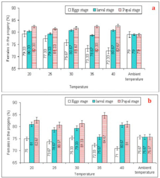 Mean (±SEM) values of % females in the progeny of Trichogramma poliae (a) and T. chilonis (b) under the influence of various temperature shocks during immature stages. Bars having same arena with different letters indicate statistically significant differences (P ≤ 0.05, Tukey's HSD test). High quality figures are available online.