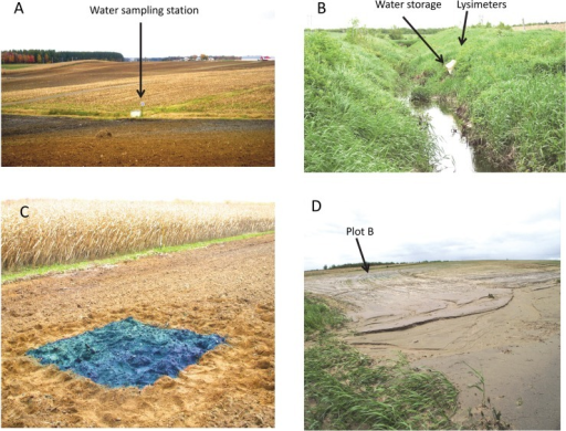 Photos of (A) the general aspect of the field, (B) the buffer strip, (C) Blue and rhodamine application on plot C, and (D) gullies near plot B and interception of particles in the buffer strip grass after the most intense rain during the studied period (Photos: Soil Physics and Hydrodynamic Group, Université Laval).