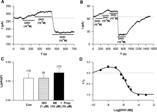 The effects of DHO on Na/K pump current in human heart cells. Stimulation of IP by low [DHO] and inhibition of IP by high [DHO] were observed in human ventricular myocytes (A) and in human atrial myocytes (B). (C) The effects of β-adrenergic activation (ISO) and α-adrenergic activation (NE + PROP) on IP in human atrial cells. Bars indicate standard deviations. The numbers in the parentheses represent the number of cells studied. There was no significant effect of ISO (P = 0.50). However, there was a significant difference between IP in control and that in the presence of α-adrenergic activation (P = 0.009). (D) The ΔIP-DHO curve in human atrial cells. ΔIP was normalized as described in Fig. 6 A. Data were fitted assuming the presence of only one DHO affinity pump, since the α1-isoform of the Na/K pump in human heart has essentially the same DHO affinity as the α2- and α3-isoforms. The positive values of ΔIP at DHO concentrations of 10−9, 10−8, and 10−7 M represent statistically significant increases in the holding current with P values of 3 × 10−3, 10−3, and 4 × 10−3, respectively.