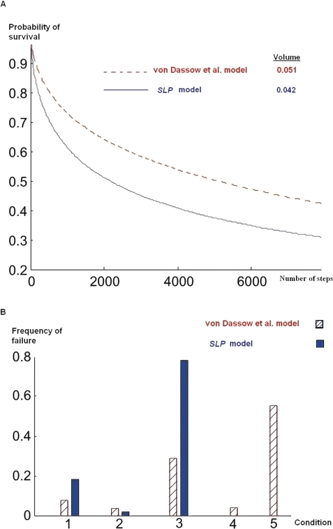 Random walk in the space of admissible parameters.We choose a random point from admissible parameter set and follow a random walk until it hits a boundary after t steps. (A) The red (and dashed) and the blue (and solid) graphs represent the probability of survival as a function of time for von Dassow et al. and SLP models, respectively. These graphs results from 30,000 runs of random walks. The results given for volume are based on the fraction of feasible parameter combinations found in 1,000,000 randomly chosen combinations. (B) Histogram of violated conditions for the random walk in (A). The number above each bin indicates the corresponding condition in Tables 1 and 2.