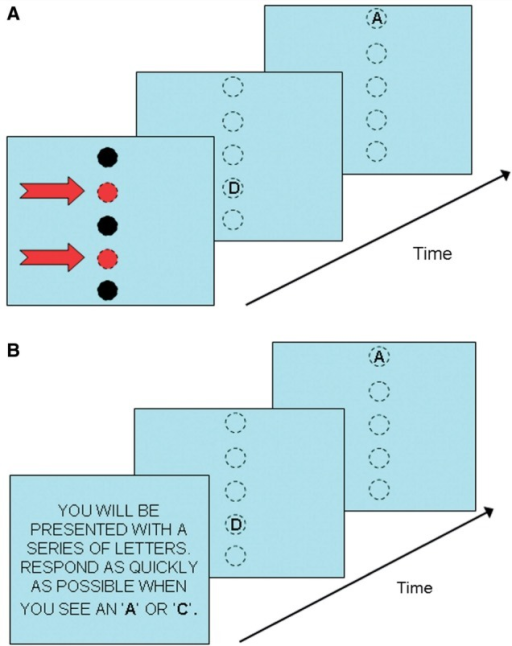 Spatial and non-spatial (verbal) tasks in Experiment 2. (A) In the spatial task, subjects were asked to respond whenever a letter was presented at either of the two predefined locations (indicated by red arrows in this figure, but not displayed during the actual experiment). The first test display shows a letter appearing at one of the target locations; the second display shows a letter at a non-target location. Broken-line circles indicate potential target positions; targets were displayed on a blank screen and there were no target markers. (B) In the non-spatial task, subjects responded whenever the letter 'A' or 'C' was presented regardless of their spatial location. The second test display shows a target stimulus; the first display shows a non-target.