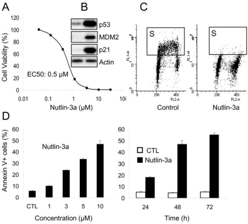 Nutlin-3a activates p53 signaling in LNCaP cells. A) Antitumor activity of Nutlin-3a. Cells were incubated with nutlin-3a for 5 days and cell growth/viability measured by the MTT assay. B) Changes in key proteins. Exponentially proliferating LnCAP cells were treated with 10 μM Nutlin-3a, or DMSO for 20 h and cell lysates were analyzed by Western blotting. C) Nutlin inhibits cell cycle progression. LNCaP cells were treated with 10 μM nutlin-3a for 20 h and analyzed by BrdU labeling and flow cytometry. Box indicates the S phase compartments. D) Nutlin induces dose and time-dependent apoptosis in LNCaP cells. Cells were incubated with nutlin-3a at the indicated concentrations and the percentage of the Annexin V-positive cells was determined. Time-dependant apoptosis was determined at 10 μM concentration.