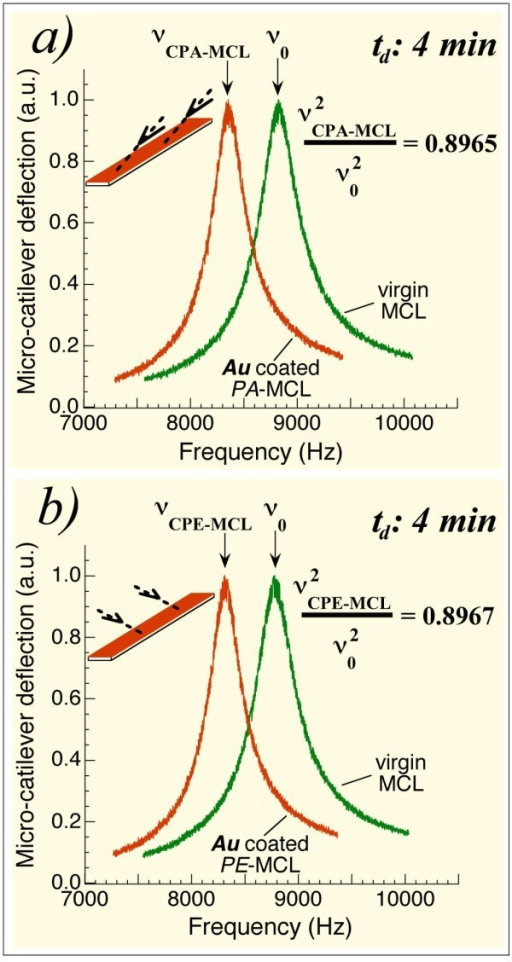 Resonant frequencies of two simultaneously Au coated MCLs: isotropic elasticity of the films. (a) Resonant frequency of an MCL before coating, νo, and the corresponding frequency, ν(CPA-MCL) of the same MCL (now referred to as the CPA-MCL) after 4 min Au coating and positioned with its longitudinal direction parallel to the cone generatrix. (b) Resonant frequencies for the MCL prior to coating and the same MCL (now referred to as the CPE-MCL) after 4 min simultaneous Au coating and positioned with its longitudinal direction perpendicular to the cone generatrix. Note that the same value of the ratio ν2(C-MCL)/νo2 was measured for CPA-MCL and CPE-MCL. Evidence that the mass deposited on the PA-MCL is identical to that deposited on the PE-MCL is also shown.