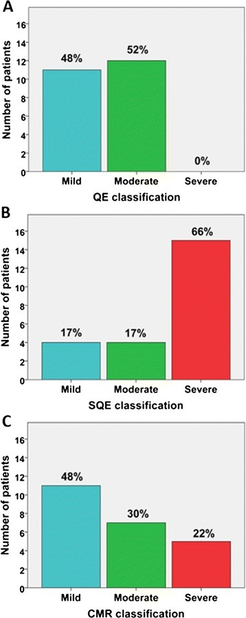 Comparison of paravalvular leak (PVL) classification by qualitative echocardiography (QE), semi-quantitative echocardiography (SQE), and cardiovascular magnetic resonance (CMR). QE classification included the estimated width of the color Doppler jet in the left ventricular outflow tract: mild (jet width < 25% of left ventricular outflow tract width), moderate (jet width 25 to 65% of left ventricular outflow tract width), and severe (jet width >65% of left ventricular outflow tract width). SQE included the circumferential extent as the sum of the paravalvular leak jet circumference(s) divided by the valve circumference: mild (<10%), moderate (10-30%), and severe (>30%). CMR classification included the aortic regurgitant fraction as calculated by dividing the reverse flow volume by the forward flow volume: mild (≤20%), moderate (21-39%), and severe (≥40%).