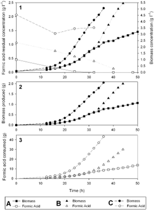 Growth of R. eutropha in a pH-controlled fed batch fermentation with formic acid as the sole substrate. Three different initial concentrations (A: 0.5 g l−1; B: 1.0 g l−1 and C: 2.0 g l−1) of formic acid were used to initiate the pH-controlled feeding. One culture for each initial concentration is depicted in the figure. The experiments were performed in duplicate.1. Biomass and residual formic acid concentrations over time.2. Total biomass produced over time.3. Total formic acid consumed over time.