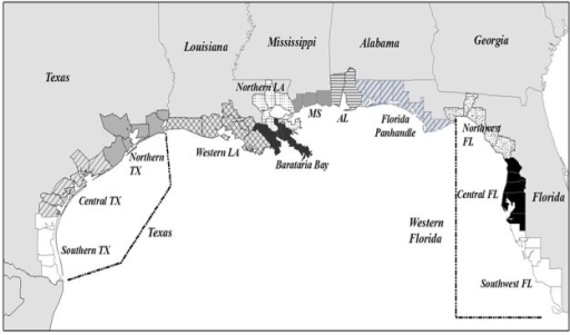 Map of the US Gulf Coast showing county groups used i Openi