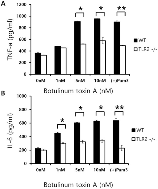 TLR2 KO mice show decreased expression of TNFα and IL-6 cytokines upon BoNT/A stimulation.WT (black bar; n = 6) and TLR2 KO mice (white bar; n = 6) were used to isolate bone marrow monocytes. Differentiated BMDM cells and subjected to BoNT/A treatment. Culture supernatants were analyzed for TNFα (A) and IL6 (B). All data were given as means ± SD.