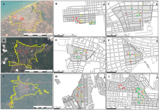 Collection sites of Ae. aegypti mosquitoes in Colombian cities of (A) Riohacha, (D) Bello and (G) Villavicencio, and the respective neighborhoods sampled in each city.The surrounding area of each city and the studied neighborhoods (gray area) of Unión (B) and Aeropuerto (C) from RI; Cumbre (E) and Granjas (F) from BE; and Porfia (H) and Popular (I) from VI are shown in the right panel. Green, yellow and red circles indicate the spatial distribution of positive houses for Ae. aegypti in the first, second and third sampling, respectively (for details see Table 1).