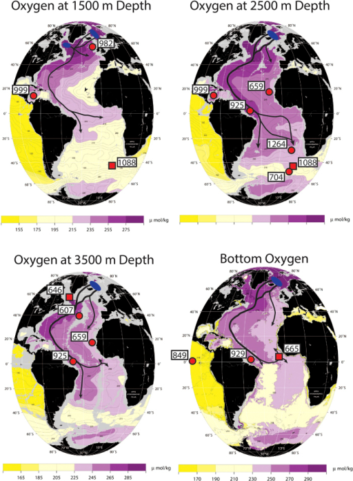 "Dissolved oxygen concentration maps of the Atlantic at different depths (modified from the WOCE Atlantic Ocean Atlas 26 to show features of deep-water circulation and the locations of all sites referred to in the text), reflecting aspects of the chemical structure of the deep-Atlantic.Arrows depict general NADW circulation patterns and blue ovals indicate areas of NADW formation. Sites are displayed on maps according to their relevant depth (Table 1). Sites with isotopic data presented in Figs 4, 5, 6 plotted with a red circle, while other sites mentioned in the text are plotted with a red square. Site 999 is situated at 2828 m in the Caribbean, but is expected to record deep-waters entering across the Atlantic-Caribbean sills at ~1600–1900 m depth. High oxygen concentrations result from recent and prolonged contact with the atmosphere, while low oxygen concentrations result from microbial respiration of organic matter over time. NADW, with high oxygen concentrations, is a well ""ventilated"" water mass, in contrast with deep-waters entering the Atlantic from the south. These maps outline the modern dominance of NADW and highlight the importance of bathymetric constraints and deep-water pathways (e.g. the Deep Western Boundary Current versus interior pathways) in setting gradients in water-mass properties within the Atlantic."