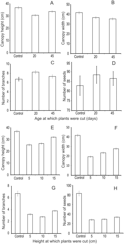 Compensatory growth after artificial herbivory at different ages in chickpea.A: canopy height, B: canopy width, C: number of branches and D: number of seeds in plants cut when 25 days old (n = 53) and 45 days old (n = 51) with control (n = 50). Compensatory growth after artificial herbivory at different heights at pre-flowering stage in chickpea. E: canopy height, F: canopy width, G: number of branches, H: number of seeds of plants cut at 5 (n = 50), 10 (n = 51), 15 (n = 54) with control (n = 50).
