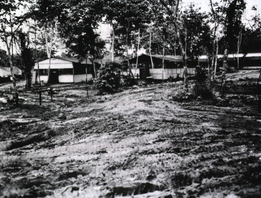 <p>Several one-story huts are seen amidst trees. In the foreground is an unpaved, muddy road.</p>