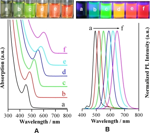 (A) The image of MSA-coated CdTe QDs with different sizes under ambient conditions (top) and the corresponding absorption spectra (bottom); (B) The image of the above-mentioned MSA-coated CdTe QDs under an ultraviolet lamp (top) and the corresponding photoluminescence spectra (bottom). The photoluminescence were at a) 493 nm, b) 519 nm, c) 551 nm, d) 589 nm, e) 617 nm, f) 647 nm. These CdTe QDs were synthesized at pH = 7.2.