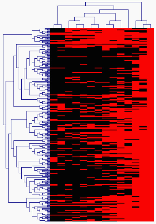 An illustration of two-way hierarchical clustering analysis of 1118 SAGE tags highly expressed in the mouse microdissected outer nuclear layer (ONL) published by Blackshaw et al. [39]. Each row represents a SAGE tag, where each columns correspond to a SAGE library. A total of murine 14 libraries were considered including different tissues and developmental stages, including mouse NIH-3T3 fibroblast cells, adult hypothalamus, developing retina at 2 day intervals from embryonic day (E) 12.5 to postnatal day (P) 6.5, P10.5 retinas from the paired-homeodomain gene crx knockout mouse (crx-/-) and from wild type (crx+/+) littermates, adult retina and microdissected outer nuclear layer (ONL). developing retina at 2 day intervals from embryonic day (E) 12.5 to postnatal day (P) 6.5, P10.5 retinas from the paired-homeodomain gene crx knockout mouse (crx-/-) and from wild type (crx+/+) littermates, adult retina and ONL.
