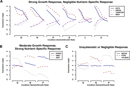 Representative genes responding to growth rate, specific nutrients,or unsystematically in our chemostat-derived training data.Our statistical model of growth rate regulation is based on expressiondata collected from 36 chemostats at six growth rates (0.05hr−1 through 0.3 hr−1)under six nutrient limitations (Glucose, Nitrogen, Phosphate, Sulfur,Leucine, and Uracil) as described in [4]. Byemploying the genes responding strongly, consistently, and only tochanges in growth rate (and not specific nutrients) as growth-specificgenes, we can apply our model to predict relative growth rates in newexpression data. Gene expression in our original 36 conditions fell intothree main categories as shown here. (A) Genes strongly up- ordown-regulated in response to changes in growth rate, independent oflimiting nutrient. The most statistically significant members of thisset became our growth-specific calibration genes for application of thelinear model to other expression data. (B) A subset of conditionshighlighting genes with expression levels showing some correlation withgrowth rate, but with a strong nutrient-specific component. Thisrepresents a sizeable portion of the genome (∼25%),with positively growth-correlated genes enriched mainly for ribosomalfunction and negatively correlated genes enriched for oxidativemetabolism. (C) A subset of conditions highlighting genes showing anon-systematic or negligible change in gene expression. Unresponsivegenes were enriched for a variety of cellular processes not expected toshow a strong relationship with growth, e.g. transcription, DNAmetabolism and packaging, secretion, and many others.