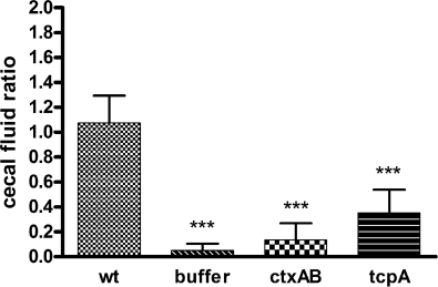 Cecal fluid accumulation ratios in infant rabbits inoculated with wild-type or mutant V. cholerae or buffer. Samples were collected 22 h after infection. The ratios were calculated as the weight of accumulated cecal fluid to the weight of drained cecal tissue. Error bars represent the standard deviations of the means. Values that were significantly lower (P < 0.001) than the ratio measured with wild-type (wt) V. cholerae infection are indicated by three asterisks. There were at least seven rabbits in each group.