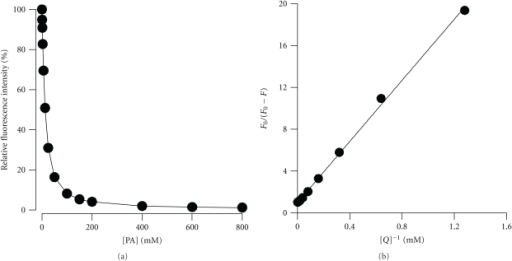 Plot of maximum fluorescence intensity versus [PA]. (a) Tyrosinase was incubated with various concentrations of PA (1.56 to 800 mM). (b) Double reciprocal plot of F0/(F0 − F) versus [Q]−1. Data was treated according to (4). F0 maximum native fluorescence intensity; F maximum fluorescence intensity of sample; Q quencher PA.
