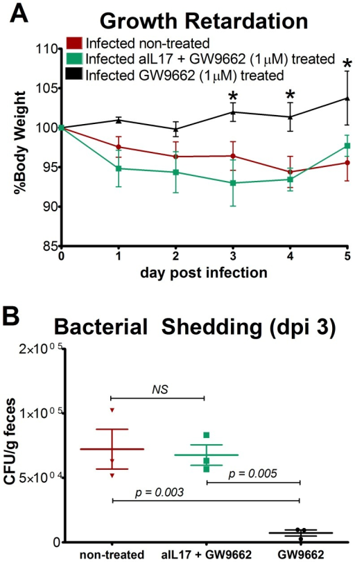 Neutralization of IL-17 abrogates the beneficial effects of GW9662 on weight loss and bacterial burden.Growth retardation in infected wild type mice is expressed as percent growth from day 0 after challenge (A). Enteroaggregative Escherichia coli (EAEC) burden in the colon was assessed by quantitative real time RT-PCR using bacterial DNA isolated from feces of infected mice treated with 1 µM PPARγ antagonist GW9662 (n = 3), 50 µg anti-IL17 and 1 µM GW9662 combined (n = 3) or untreated (n = 3). Asterisks indicate values where differences are statistically significant (p<0.05), NS signifies no significant difference, and bars are present to indicate significance between groups.