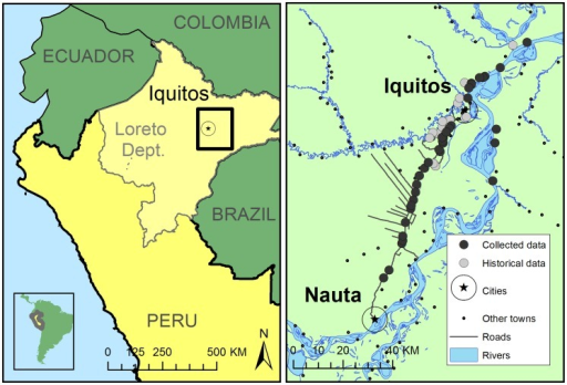 Map of study area.Iquitos is the largest city in the Peruvian Amazon (pop: 380,000), and is accessible only by boat or plane. There are approximately 500,000 people living in the study area shown on the right side of the map. Fluvial routes are the predominant mode of transportation in the region.