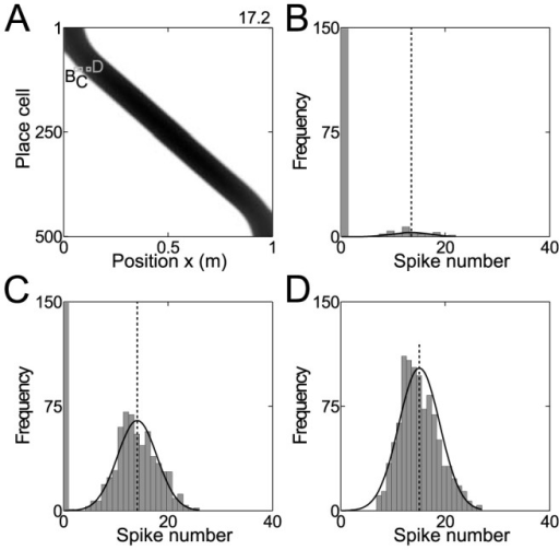 Spike count likelihood of place cells.(A) Firing rates (gray code) of model place cells as a function of position. (B–D) Simulated spike counts and fits of the model function eq. (5) for examples indicated in A.