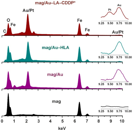 EDS spectra of the final functionalized mag/Au–LA–CDDP* nanoparticles and their synthetic intermediates, mag/Au–HLA, mag/Au and mag nanoparticles, with the assigned peaks of carbon, oxygen, iron and gold/platinum. Insets: detail of the gold/platinum region (depicted in the 9.25–10.00 keV range).
