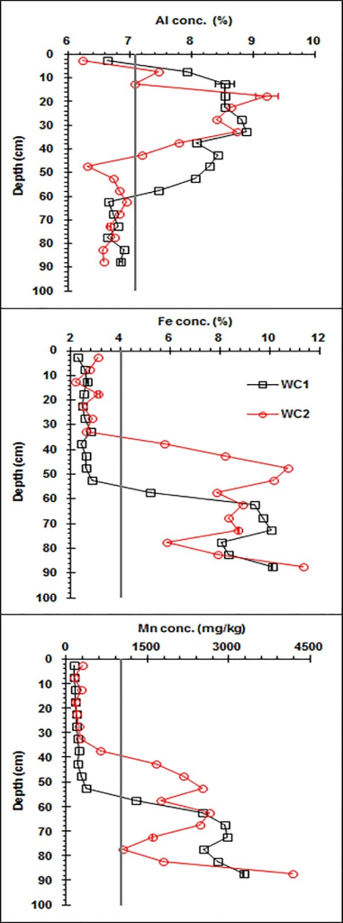 Vertical distributions of the Fe, Mn, and Al concentrations along the wetland Argialbolls profile (WC1: wetland core one, WC2: wetland core two).The vertical line represents the median concentration for worldwide soils.