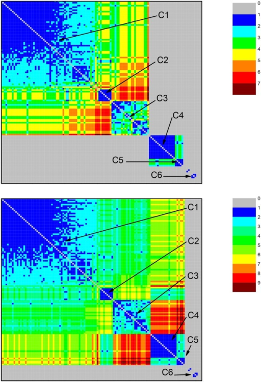 Community structure revealed by the color representation of the neighborhood matrices (NM) of two networks based on the dataset for ATP synthase subunits 4 and b at values σ = 36%—top panel—and σ = 35%—bottom panel.The discussion in the caption of Fig 2 on color codes and other features of the graphs also applies. At σ = 35%, six relevant communities are identified as Ci, i = 1–6, Only C6 is separated from all the other five communities. At σ = 36%, the large group splits into two subgroups, respectively formed by C1, C2, C3, and C4, C5. Different color codes indicate larger paths, linking nodes from C3 and C5 when σ = 35%, but which are no longer present at σ = 36%.