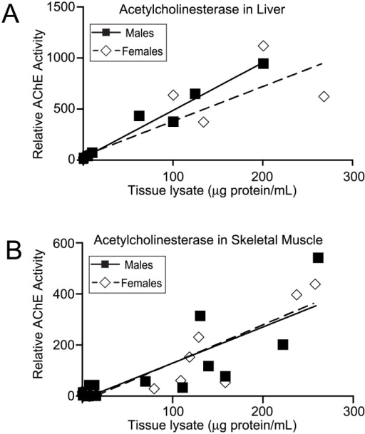Gender-based analysis of AChE activity.A and B, fluorometric AChE activity assays with liver and skeletal muscle tissue lysates, respectively, from young adult mice (aged 1.5–3 months). For both males and females, data points are the combination of four individuals. AChE activities of tissue lysates are reported relative to the activity of an AChE standard supplied with the assay kit.