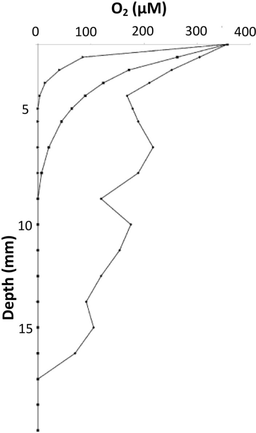 O2 concentration profiles under the rind of Cheddar cheese at 2 days (♦), 9 days (■), and 15 days (▴) of maturation. Adapted from Tammam et al. (2001).