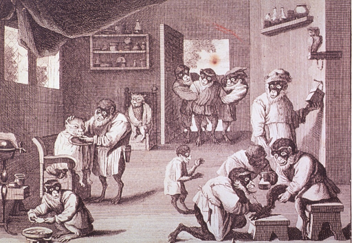 <p>Caricature:  Interior view of a clinic scene using monkey and cat figures.  Several actions are taking place; lower right is a podiatry scene; left center appears to treatment with emetic; in the background, two figures help a third through a doorway.</p>
