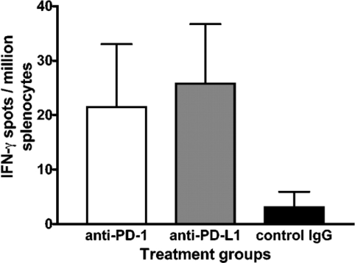 Increased frequency of IFN-γ–producing GAD-specific splenocytes in NOD mice treated with anti–PD- or anti–PD-L1 mAb. ELISPOT responses are expressed as number of IFN-γ spots per million splenocytes from anti–PD-1 mAb, anti–PD-L1 mAb, and control IgG–treated 4-wk-old female NOD mice.