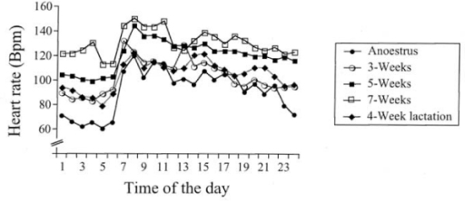 Diurnal changes of heart rate obtained by continuous 24 h (Holter) ECG in 5 beagle dogs during anoestrus, pregnancy and lactation. For simplicity only the means are shown (for means and SEM, see Table 2). The heart rate was significantly (p < 0.001) increased already at 3 weeks of pregnancy compared to anoestral values and was further increased at 5 and 7 weeks of pregnancy. At 4 weeks of lactation, the heart rate had decreased to a level similar to that at 3 weeks of pregnancy. Bpm = beats per minute.