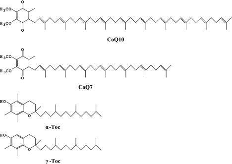 Chemical structures of CoQ10, CoQ7, α-Toc, and γ-Toc.